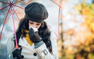 Egy passzívház az allergia ellen is megvéd
